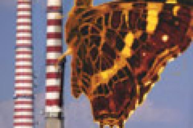 Handel emisjami: rynek w okresie dojrzewania