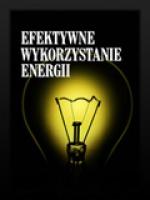 NP Polski Program Efektywnego wykorzystania energii w napędach elektrycznych PEMP