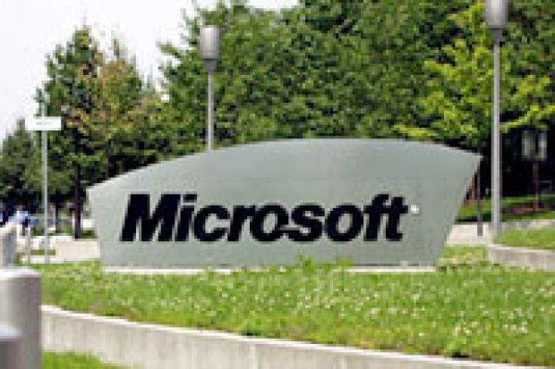 Microsoft atakuje konsultantami