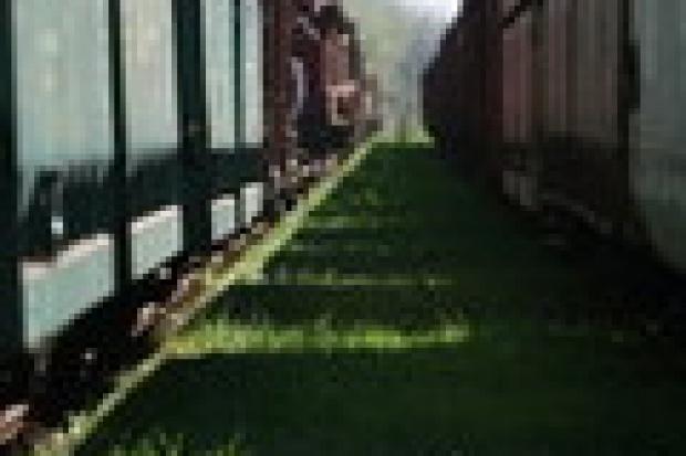 Starcia przygraniczne przewoźników kolejowych