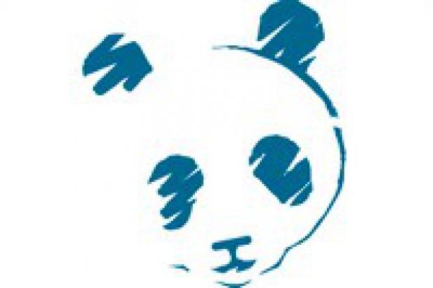 Nowe oblicze Pandy