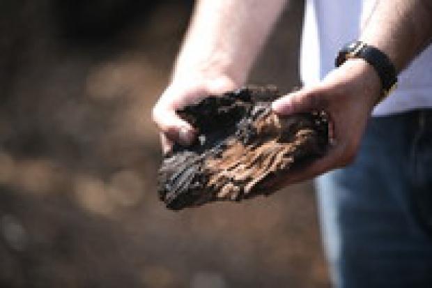 """KWB """"Konin"""" pierwszą kopalnią, która wybrała SAP"""