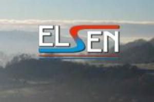 Endesa zainteresowana Elsenem
