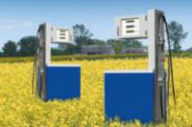 Rynek biopaliw skazany na sukces