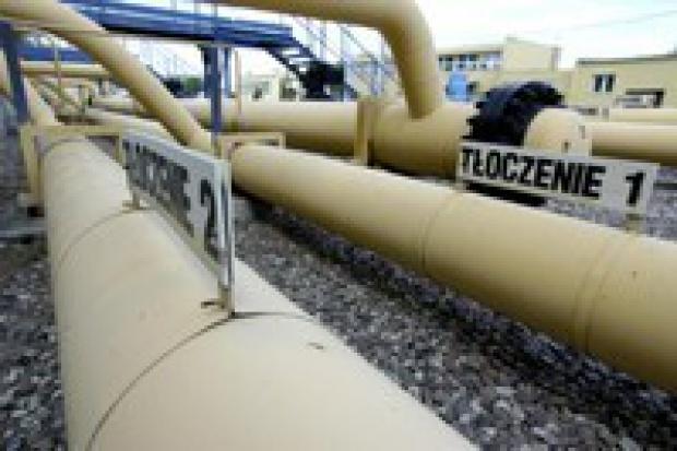 Niemcy zainteresowani dostawami gazu