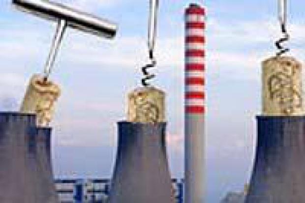 Minister środowiska: elektrownie zasłużyły na obcięcie limitów CO2