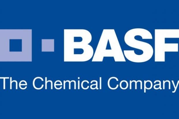 BASF bierze Cibę