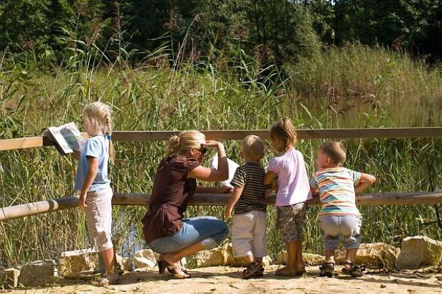 Górażdże Cement prowadzi edukację przyrodniczą