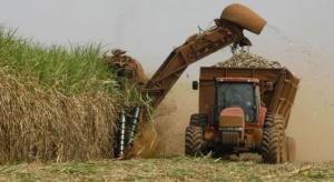 Brazylia zainwestuje 25 mld USD  w etanol