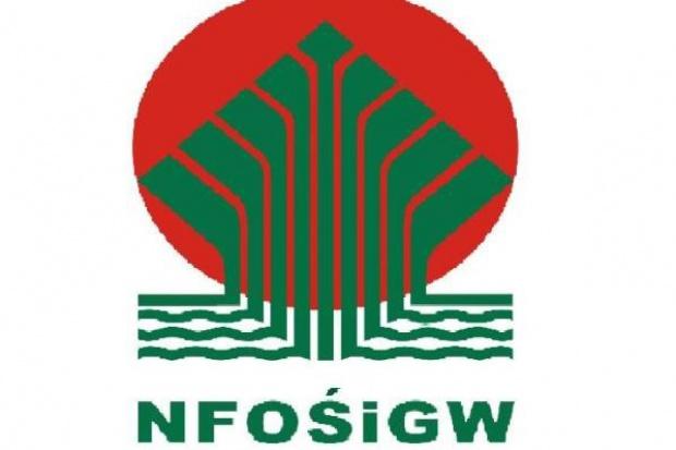 700 mln zł na wsparcie produkcji zielonej energii