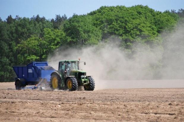Dalkia Polska: biomasa to przyszłość