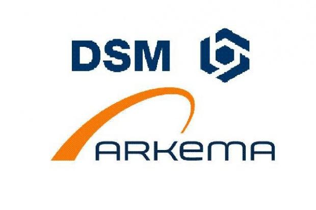 Arkema i DSM zmniejszają prognozy zysku
