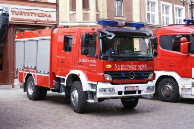 """Jak """"Mercek"""" został strażakiem (polskim)"""