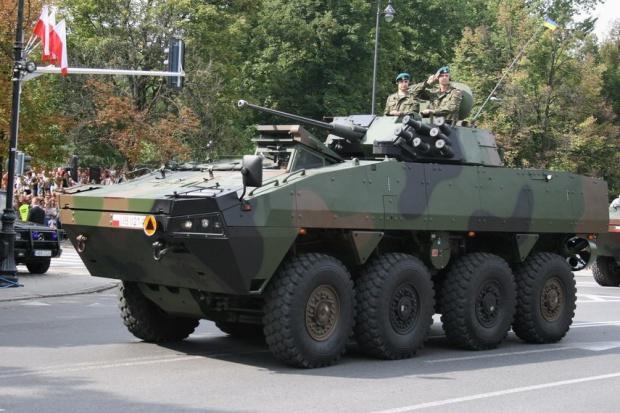 Armia zamówi więcej Rosomaków