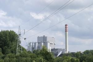 Ocena potencjału ekologicznego przedsiębiorstw energetyki zawodowej w Polsce