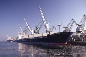 Rozpoczęła się prywatyzacja Morskiego Terminalu Masowego w Gdyni