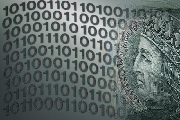 W 2009 r. wartość polskiego rynku IT spadnie o 14,9 proc.