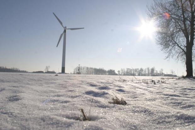 M. Owczarek: Enea chce mieć 500 MW z farm wiatrowych