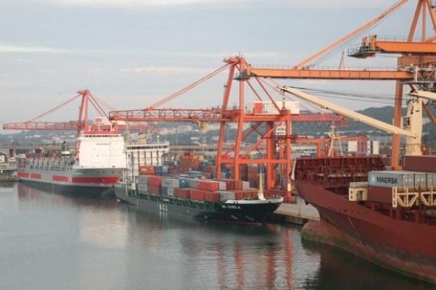 Port Gdynia: w 2009 r. spadek przeładunków, ale wzrost zysku