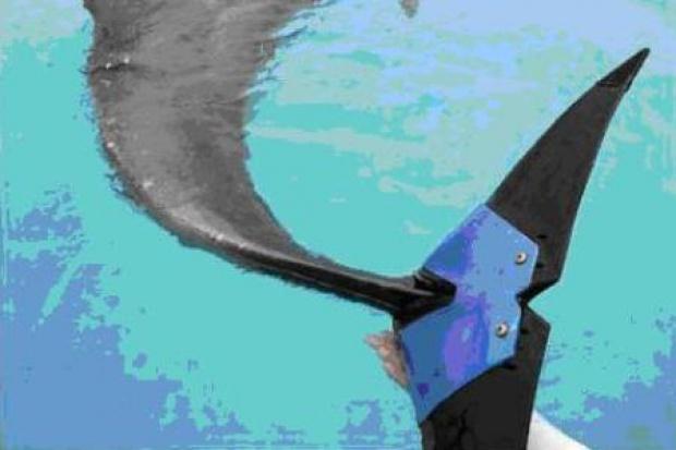 Bridgestone zafundował ogon .... delfinowi