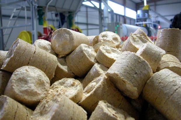 Rusza budowa największego na świecie bloku opalanego biomasą