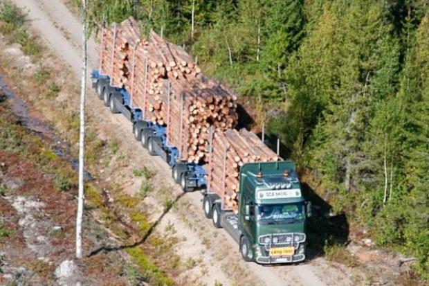 """Projekt """"One More Pile"""" czyli czym jeździć do lasu?"""