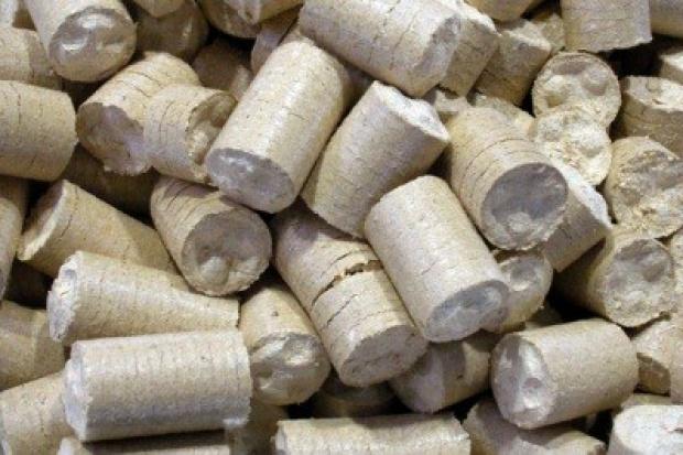 W Polsce zabraknie biomasy?