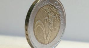 Zmiana konstytucji prawdopodobnie bez części umożliwiającej wejście do strefy euro