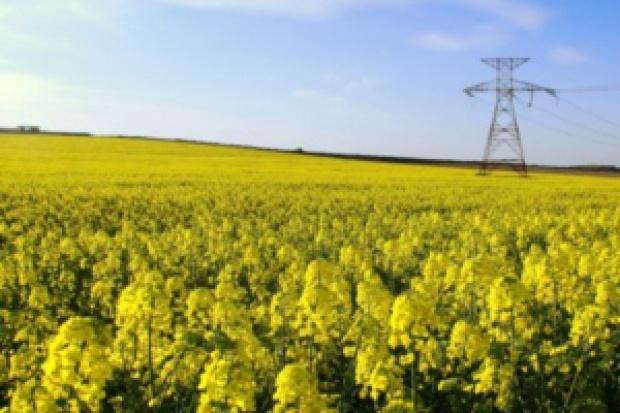 B7 nie rozwiązuje problemu polskich biopaliw