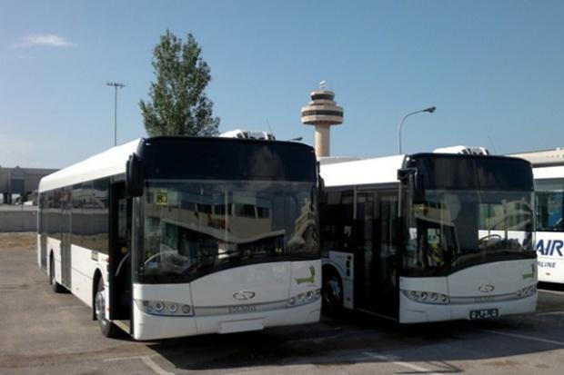 Solarisy pojechały na Majorkę