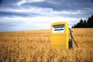 Senat przyjął projekt nowelizacji ustawy o biopaliwach