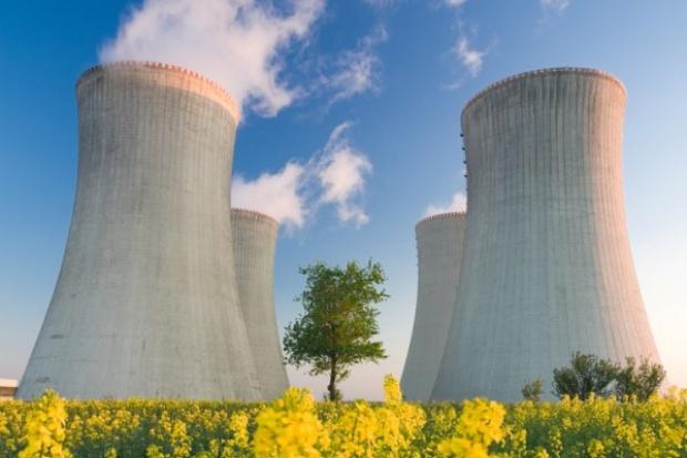 Prezydent Litwy: Łotysze nie wycofują się z budowy siłowni atomowej