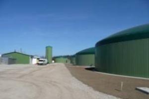 PKP Energetyka chce budować biogazownie i elektrownie gazowe