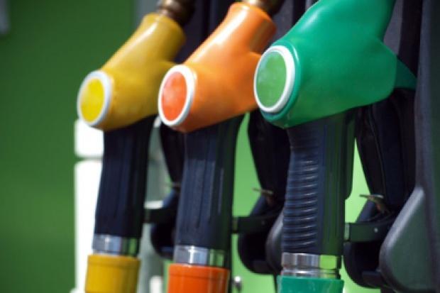 Rośnie konsumpcja paliw - kierowcy przywykli do wysokich cen