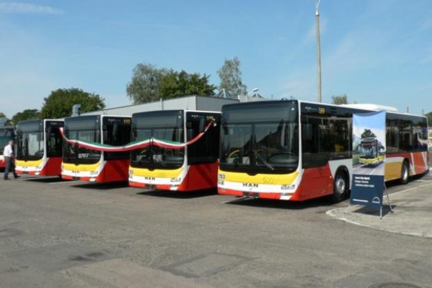 Autobusy MAN w Gorzowie