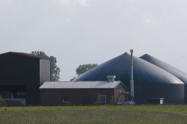P. Goldman, Energa-Bio : stan sieci energetycznych hamuje rozwój biogazowni