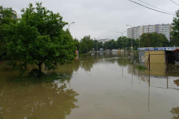 Co możemy zrobić, aby uchronić się przed powodziami?