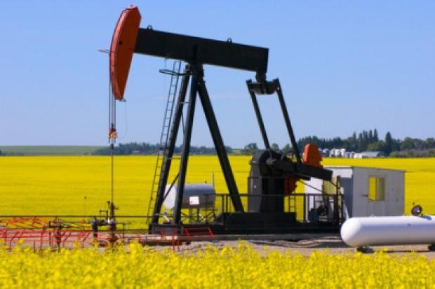 UE opóźni przedsięwzięcia ograniczające produkcję biopaliw
