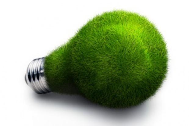 Efektywność energetyczna - Yeti czy rzeczywistość?