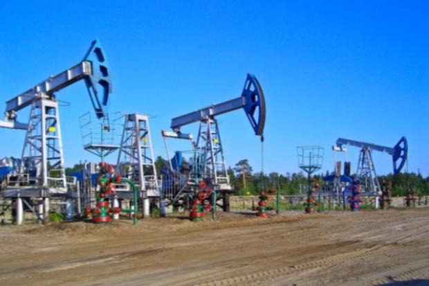 Petrolinvest chce rozpocząć wydobycie ropy pod koniec 2012 r.