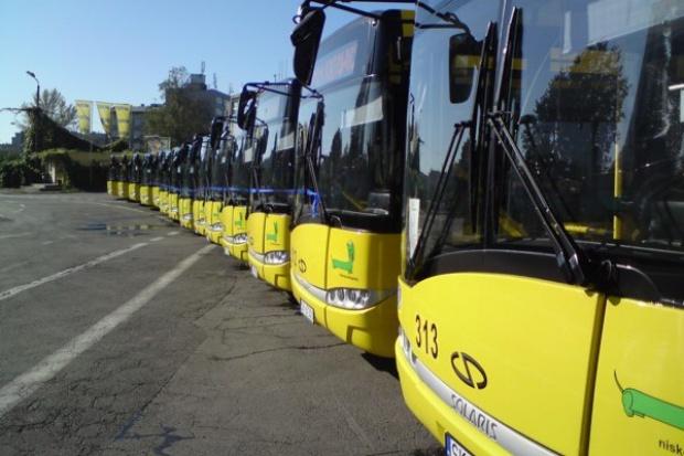 Rzut oka na nowe autobusy w Polsce