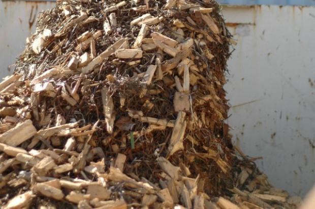 Prezes AES: import biomasy to import bezrobocia