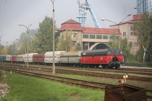 Życie po życiu kopalni Silesia