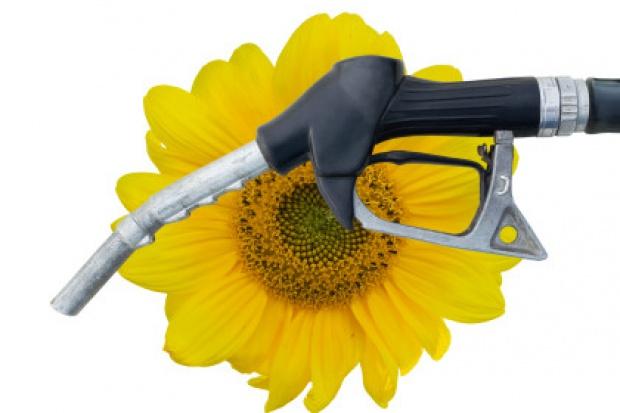 Ukraina wprowadza obowiązek dodawania biokomponentów do paliw