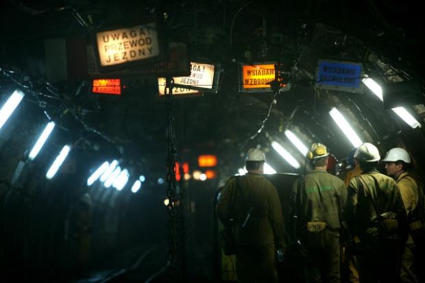 Tauron wchodzi mocnej w wydobycie węgla