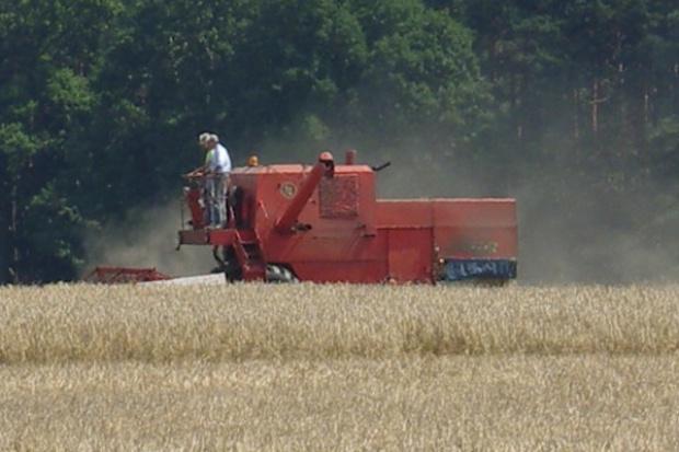 KE zapowiada ograniczenie biopaliw z upraw zbożowych