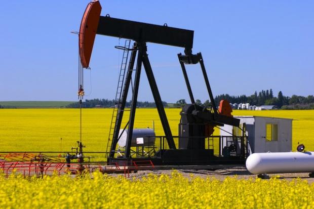 Unijni rolnicy bronią roślinnych biopaliw