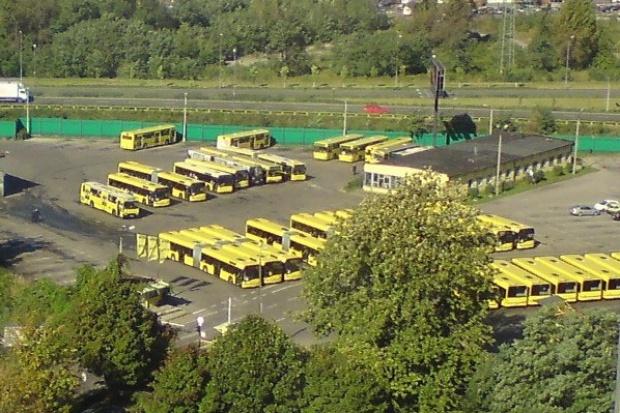 Oni rządzą na krajowym rynku nowych autobusów