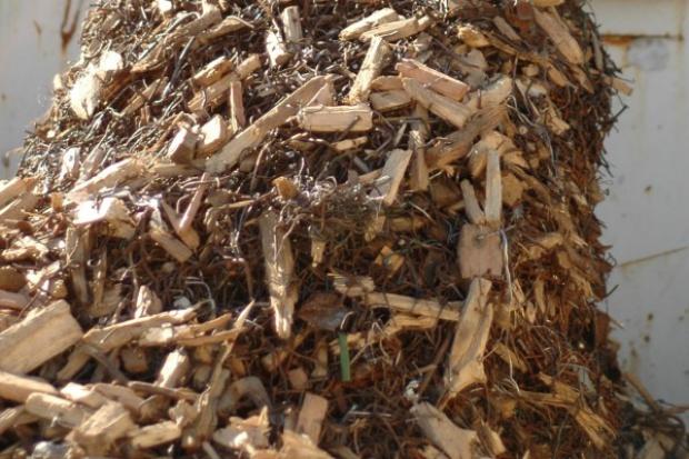 PGE unieważniła biomasowy przetarg w Bydgoszczy