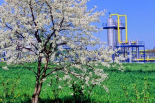Porozumienie pomiędzy GAZ-SYSTEM S.A. a Lasami Państwowymi